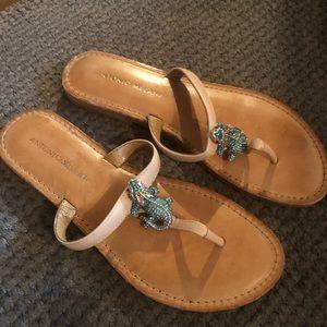 #A32 Antonio Melani Sandals Sz 7M
